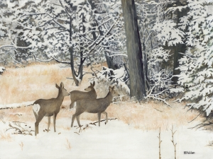 WH 36 Three Deer